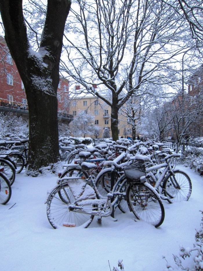 Thorildsplan, Cyklar