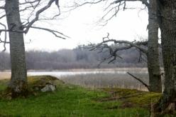 Ågestasjön (8)