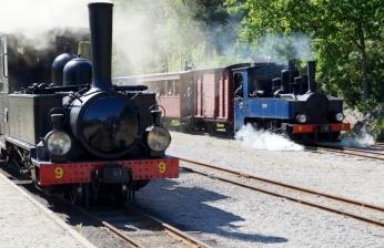 Östra Södermanlands järnväg, Ångansdag 2016, Nian och Emsfors i Läggesta