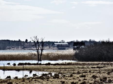Fysingen, Ströms Mad och fågeltornet